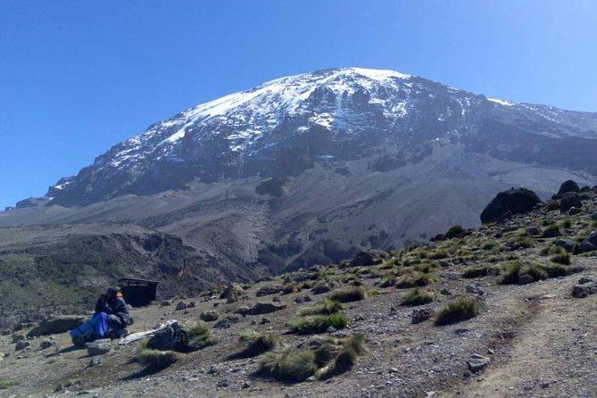 Kilimanjaro Rongai Route 5 Days Trekking