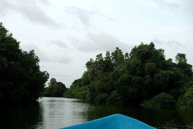Fishing Village & Mangrove Tour Experince at Negombo (Starting from Colombo) photo 3