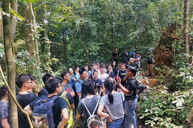 Day or Night Jungle Trekking with Sabarata, Bukit Lawang