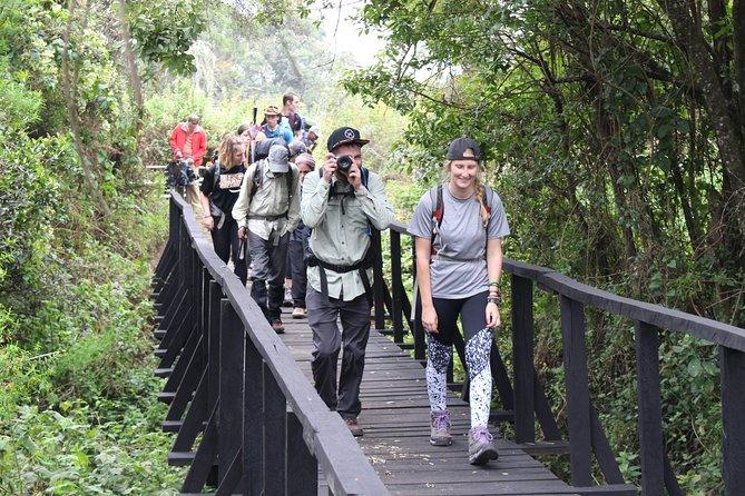 Kilimanjaro Marangu Route 5 Days