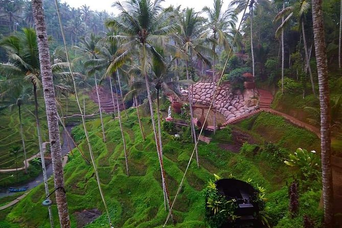 "Combination ""Ubud ATV Riding,Rice terrace view & Bali Swing"