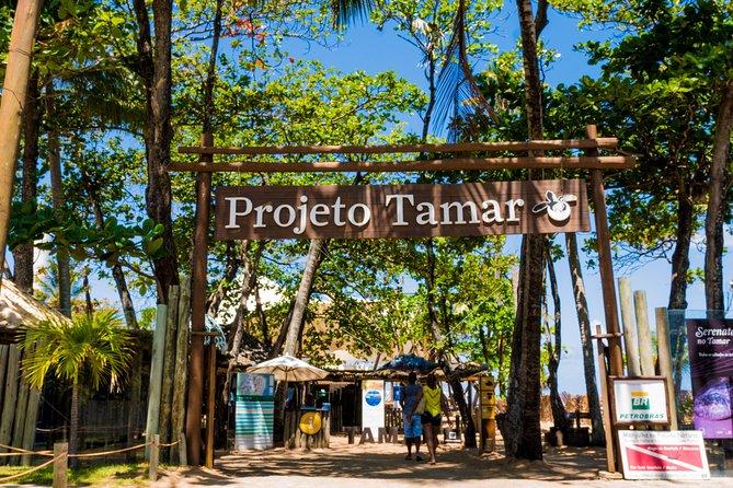 Passeio Praia do Forte e Guarajuba - partindo de Salvador