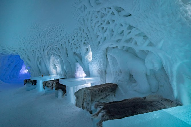 Tromsø Ice Domes Guided Tour and Reindeer Visit Package Tour