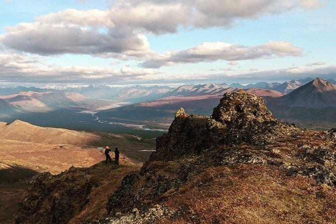 Tour Heli-Hiking di Denali