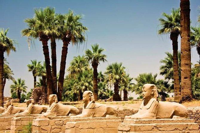 Cairo, Luxor, Aswan, Alexandria 10 Days