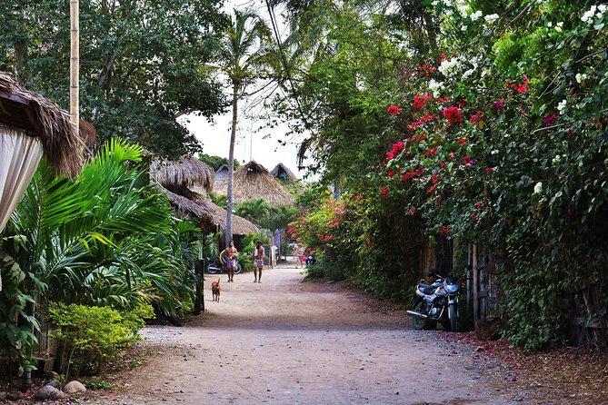 From Cartagena to Palomino