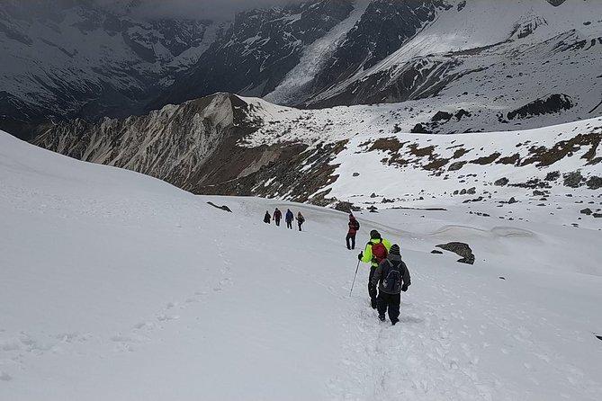Langtang Tamang Heritage Trekking