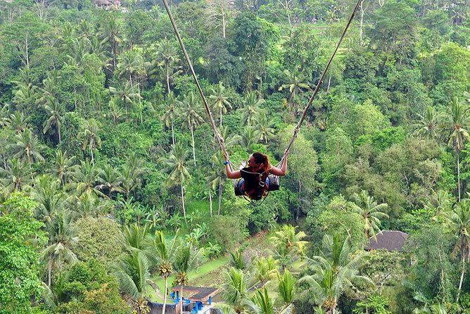 Amazing Bali Swing with transfers (Shared Tour)