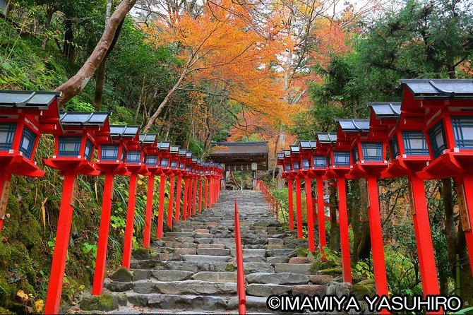 Kyoto Photogenic Tour from Osaka/Kyoto