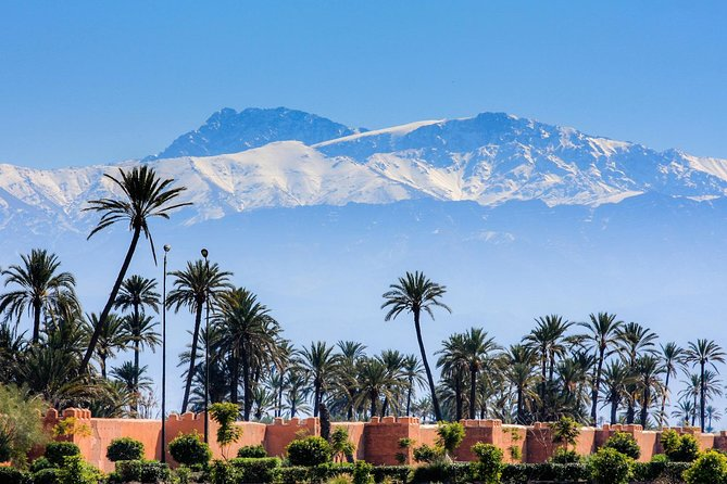 Marrakech guided city tour Half-Day