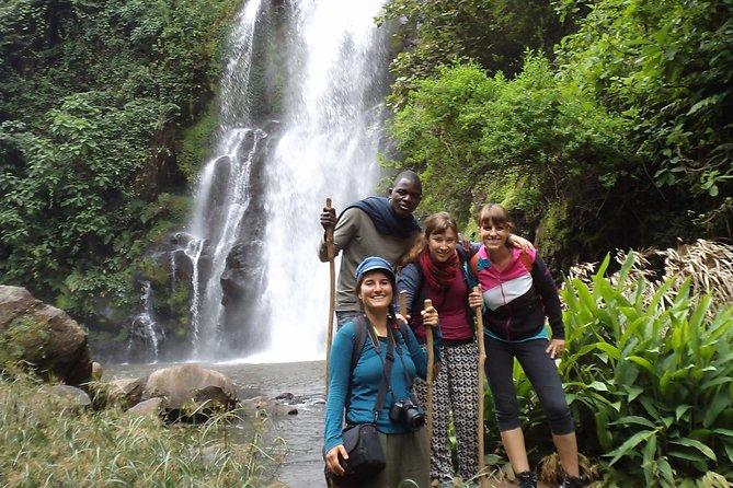 Day tour Materuni Waterfalls