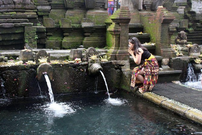 Ubud Tour : Waterfall - Water Temple - Jungle Swing - Monkey Forest - Free WiFi photo 14