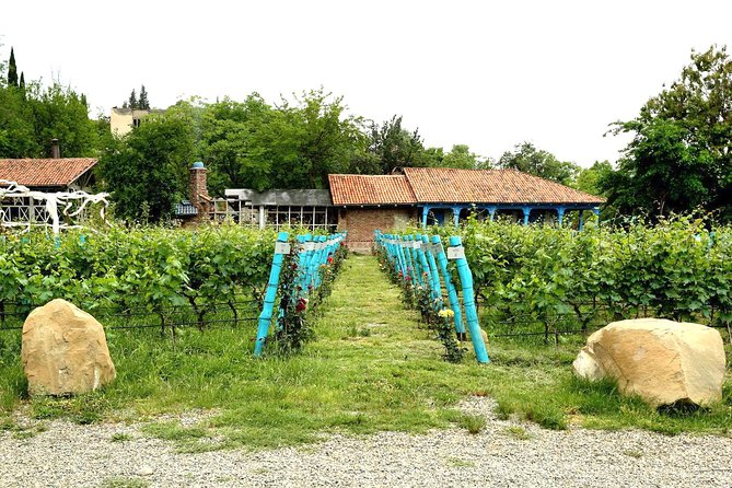 ツ ✌ Kakheti Tour – Wine Region! Food Masterclass, City of Love, Wine Tasting