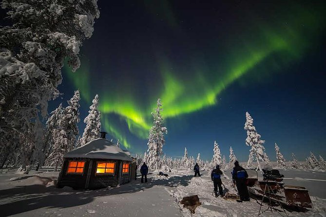 PRIVATE Tour search for the Northern Lights by Luxury car in Rovaniemi