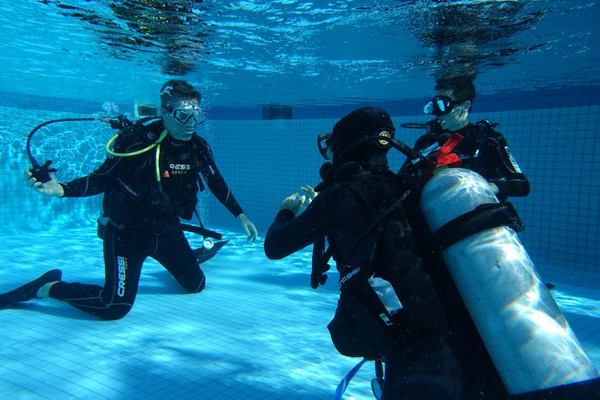 Discover Scuba Diving Course in Playa del Carmen with Two Coral Reef Dives photo 4