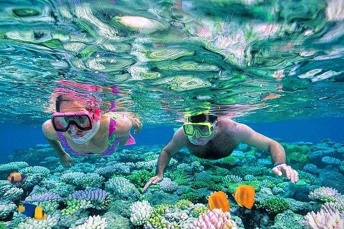 Royal Giftun Island , Massage & Fishing & Snorkeling sea trip - Hurghada