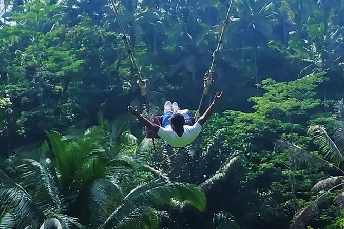 Bali Swing and Ubud Tours