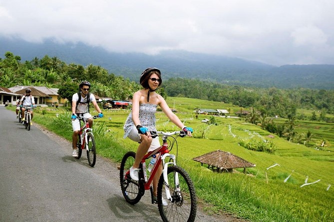 Bongkasa Village Cycling Tour with Rice Paddy views