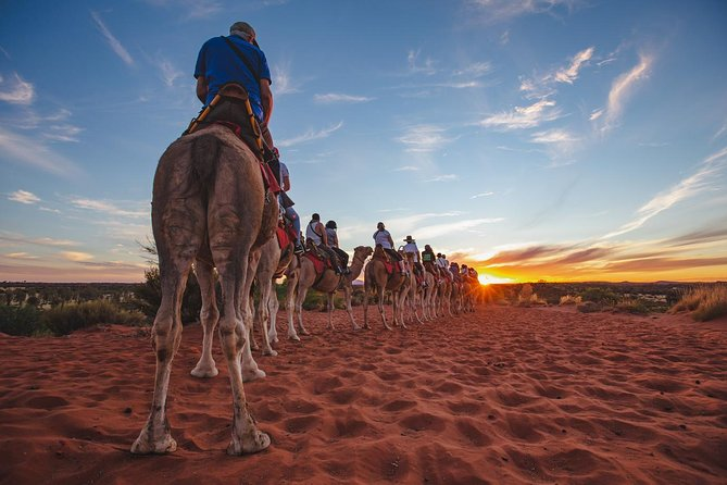Uluru Camel Express, Sunrise or Sunset Tours photo 4
