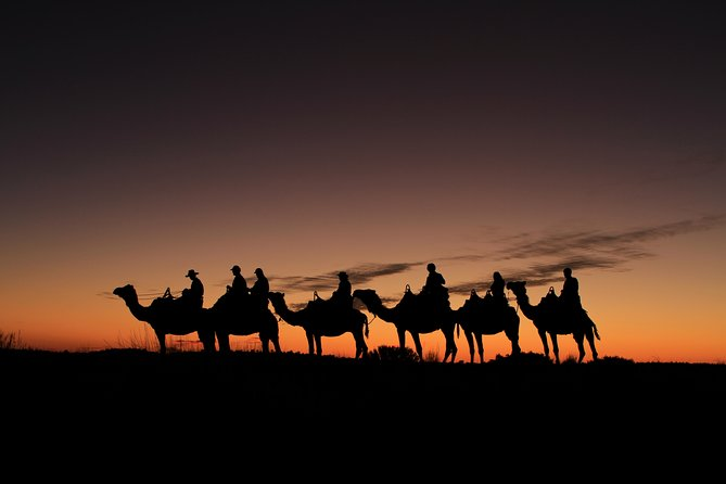 Uluru Camel Express, Sunrise or Sunset Tours photo 3