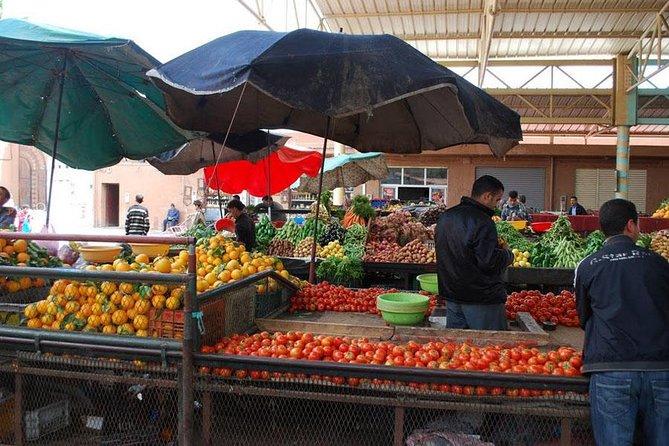 Visit of Agadir
