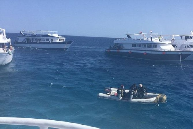 2 dives from a comfy boat for Certified Divers