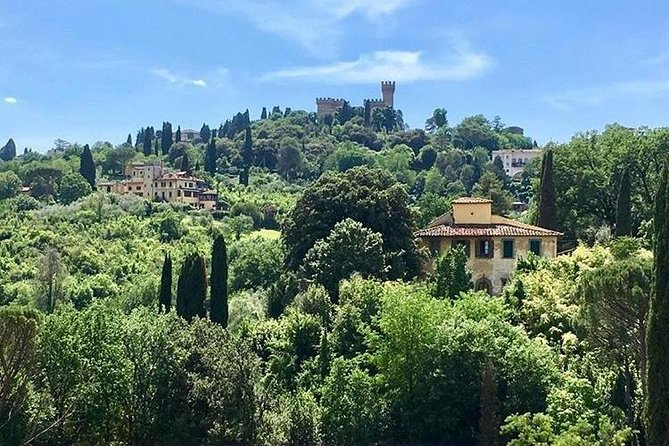 Chianti Vineyards Tours in Private Luxury Van from Florence photo 21