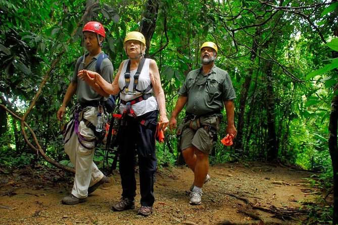 3.5-Hour Canopy Tour from Manuel Antonio