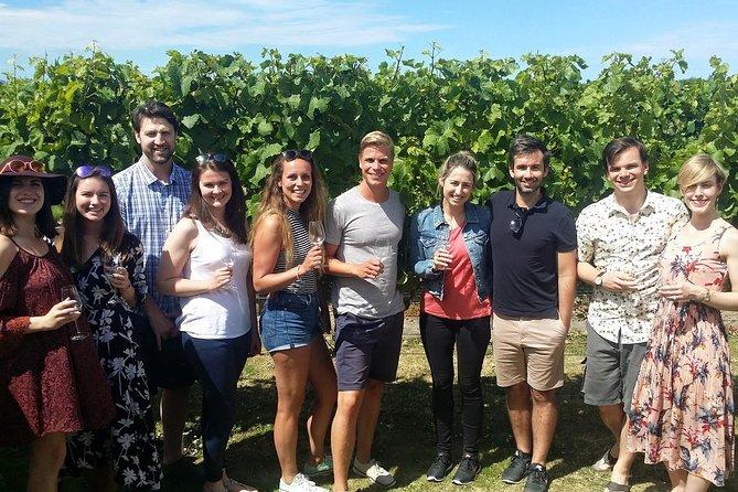 Half-Day Marlborough Wine Tour & Beer Tour