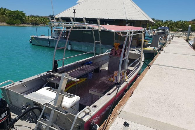 TROPIC VOYAGER - REEF FISHING, ISLAND HOPPING AND SNORKELLING