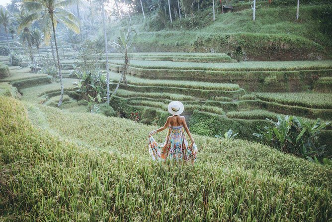 Bali All Inclusive Private Tour: Ubud Rice Terraces, Temples & Volcano