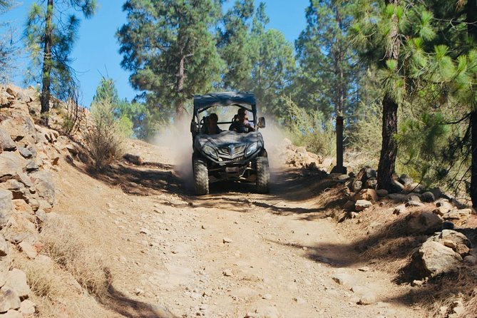 Buggy Trip Volcano Teide By Day in TEIDE NATIONAL PARK photo 13