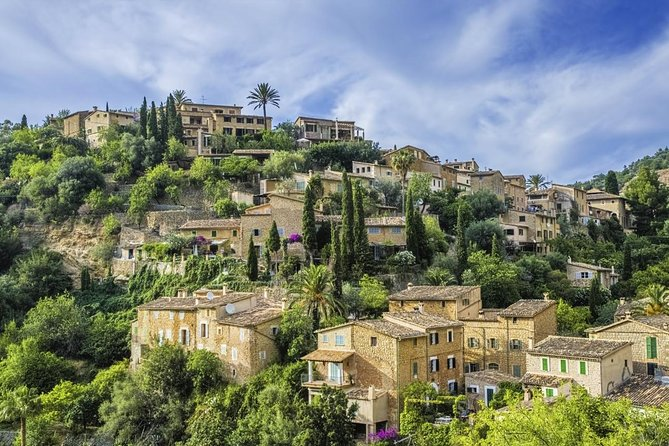 Palma City Highlights and Valldemossa - Shore Excursion from Palma de Mallorca