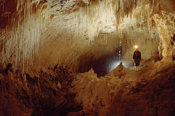 RUAKURI CAVE TOURS FROM AUCKLAND