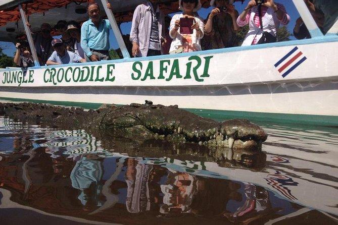 Cocodrile Safari from Jaco