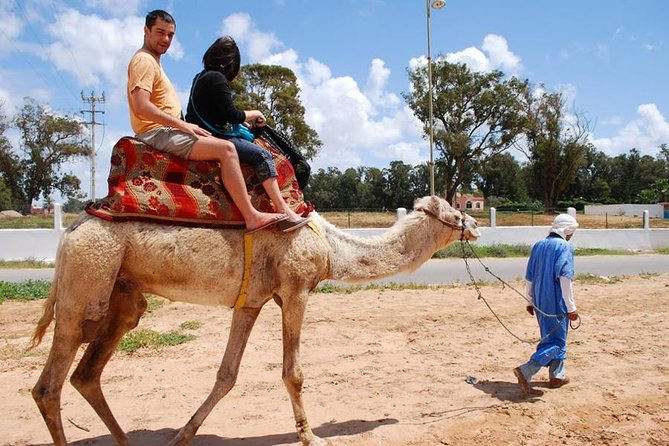 Camomadaire backpacking in Agadir