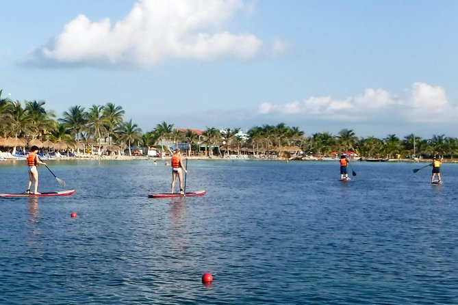 Standup Paddle Board Rental / Lesson