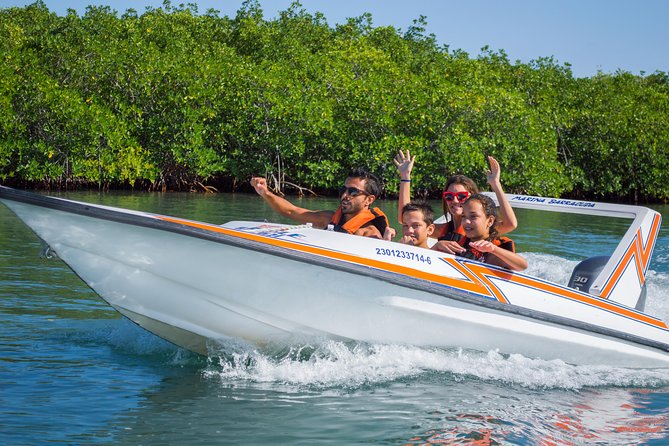 Mangrove and Lagoon Speed Boat Tour