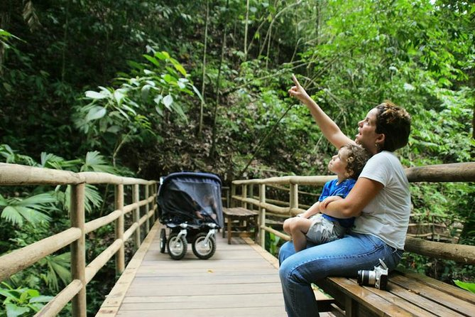 Pacific Rainforest Aerial Tram and Nature Walk from Jaco