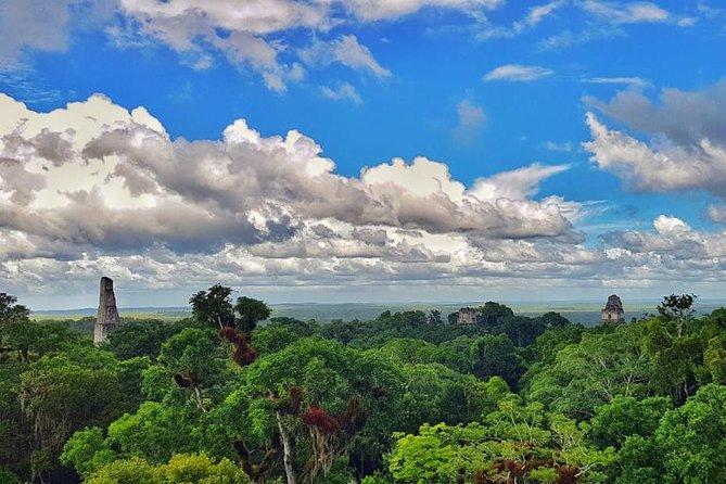 El Mirador And Tikal Tour From Flores 2d / 1n