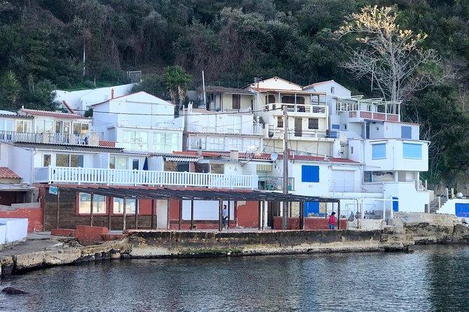 Authentic Toulon