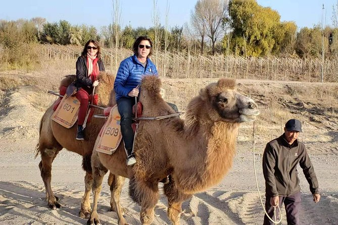 Dunhuang Private Camel Riding in the Gobi Desert