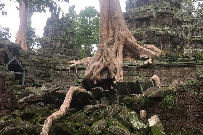 Angkor Experiences 4 Days Tours photo 20