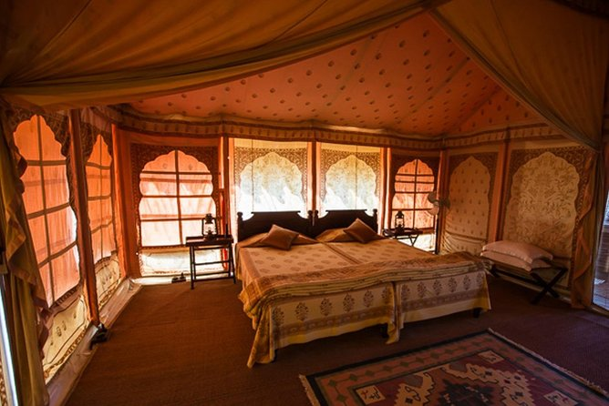 Overnight Camping With Camel Safari In Jodhpur