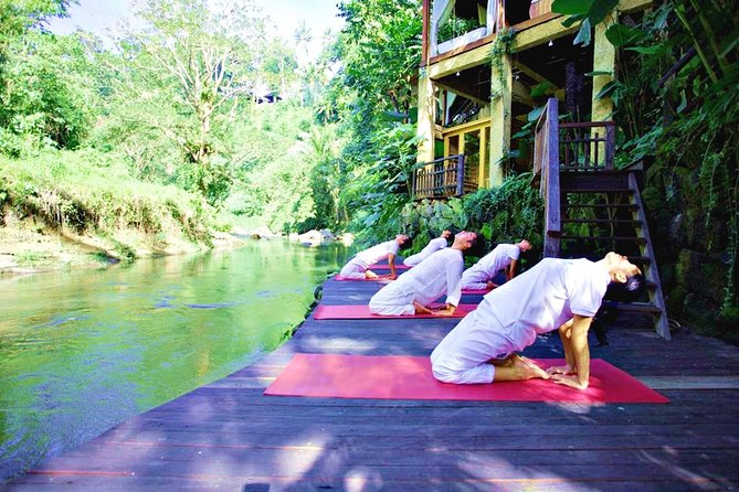 Bali-Ubud Wellness Private Tour