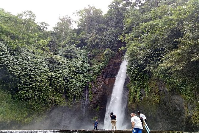 Tamblingan Jungle Hiking - Banyumala Waterfall - Ulun Danu Temple Includes Lunch
