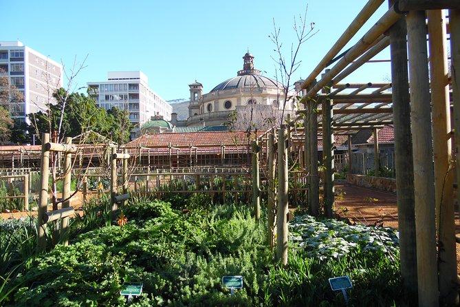 Kirstenbosch and Company Gardens