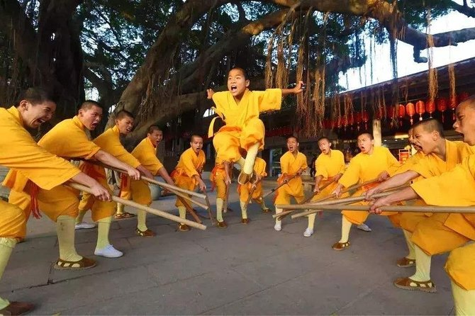Private Day Tour to Shaolin Temple from Xi'an by Bullet Train with Kungfu Show