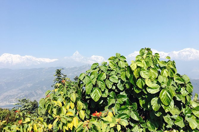 World Peace Stupa Day Hike From Pokhara photo 4