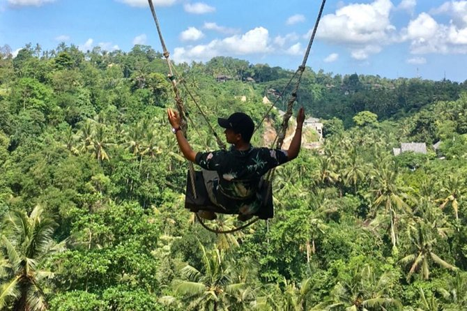 The Real Bali Swing/waterfalls& monkey forest